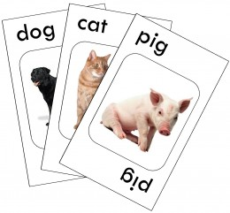 Go Fish cards that I made on the computer