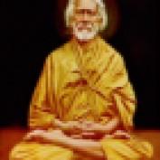 goldenrow profile image