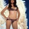 Top 10 Best Victoria's Secret Angels