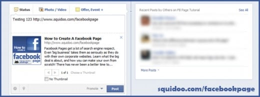 The Facebook Page body area