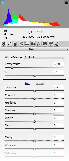 RAW image processing in Photoshop