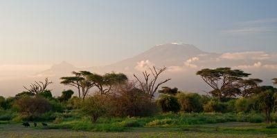 The Home of Tanzanite