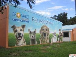 Broward County Animal Care