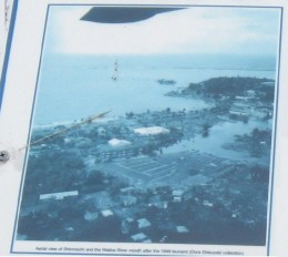 Blow-up of aerial view of Shinmachi neighborhood in Hilo, Hawaii following 1946 tsunami.
