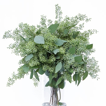 Another color of seeded eucalytpus. At Christmas time some wholesale floral suppliers spray eucalyptus gold and silver. The texture drapes beautifully over the edge of a vase, and creates bulk so you don't need too many flowers in your arrangement, b
