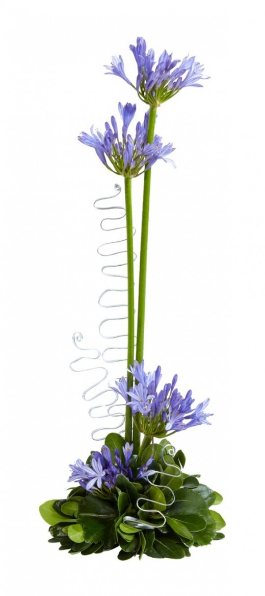 I had to include this because I have a thing about blue flowers; I love real ones. What could be more appropriate for a wedding than these Agapanthus? You don't seem them very often, but the name in greek means 'love flower'. Easy to make and economi