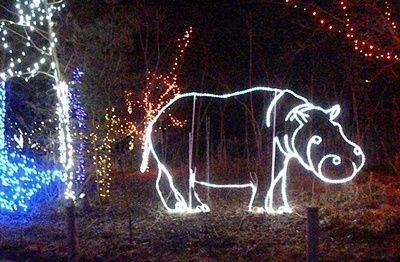 Lighted Hippopotamus