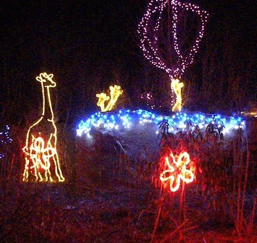 Lighted Giraffe