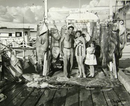 It was common to catch fish as big as people in the 1950s Florida.