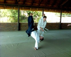 Most Effective Martial Art - Part 1: Aikido
