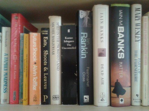 Bookshelf of Novels