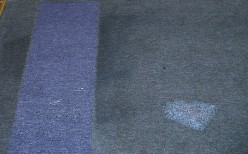 Easier Carpet Choices selecting best carpeting for your clean home