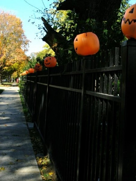 Jack-O-Lanterns displayed on a fence