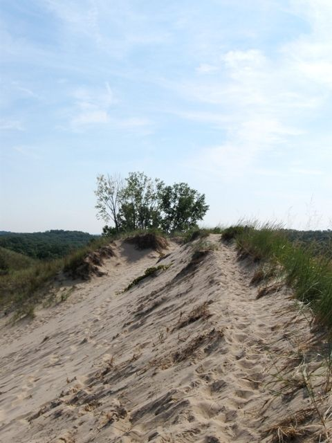 Atop a Dune on Trail 9