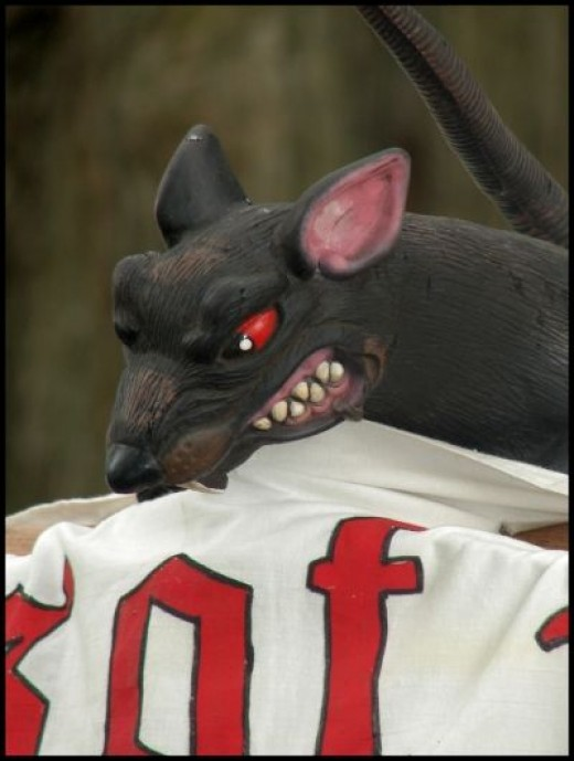 Angry Pirate Rat ARRRGH!