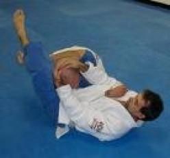 Top Ten Jiu Jitsu Submissions
