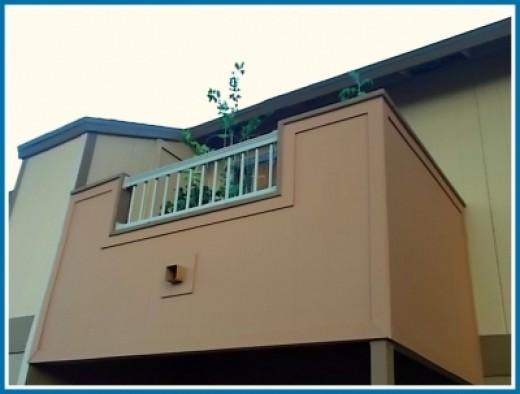 My Balcony - Street View