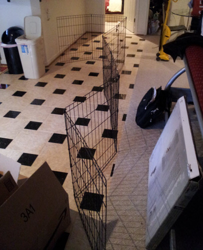 Midwest Black E-Coat Exercise Pen stretched out to block off a certain area in a room.
