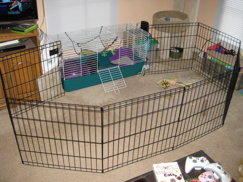 Shows pens in corner wrapped around the pet bed area.