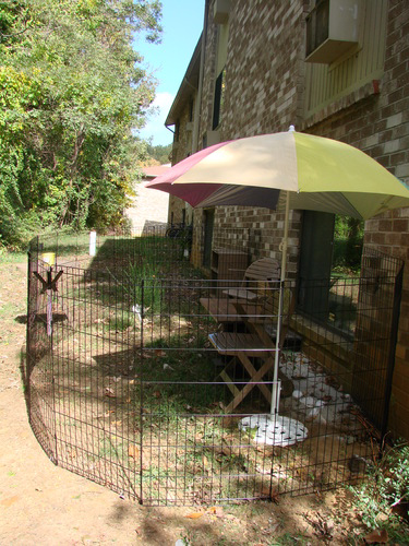 Use exercise pen outdoors with pet supervision.  Always provide shade and water if a pet is outdoors.