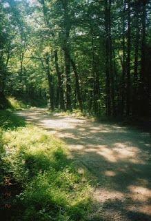 Looneyville Driveway