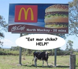 McDonald's Cow