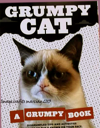 Love My Copy Of The Grumpy Cat :)