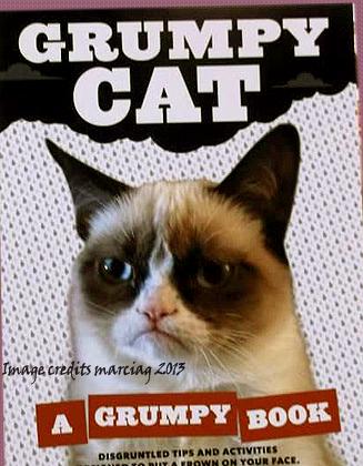 Love My Copy Of The Grumpy Cat :)