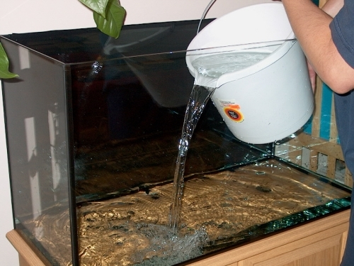 Fill the tank 1/3 full before adding your gravel base. This gives the glass some cushion as your add the stones.