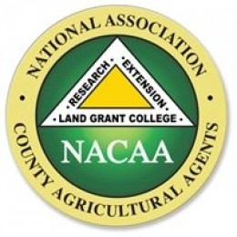the national county agents association