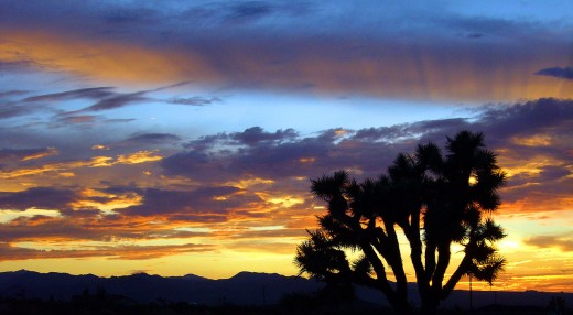 """California High Desert Summer Sunset"" by Jessie Eastland"
