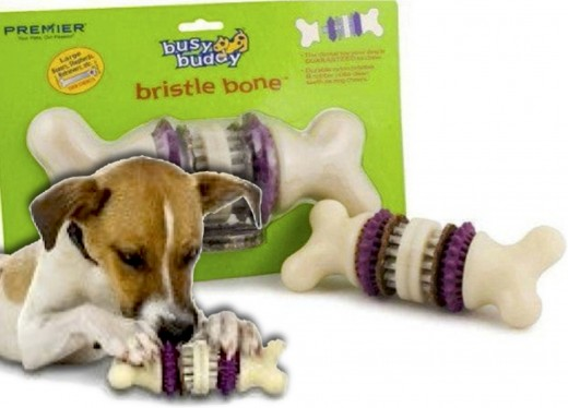 The Bristle Bone is the dental toy dogs are GUARANTEED to chew. Strong nylon nibs and replaceable rawhide rings make it irresistible! Two sizes and additional rawhide rings available. Click on Source for more info.