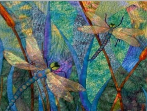 Colorful Dragonflies Postcards