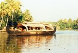 House boats on serene backwaters