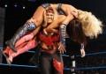 The WWE Divas - Part 2