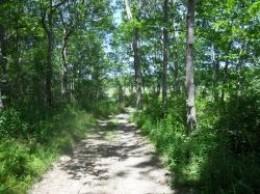 Stoney-Path-Barn-Island