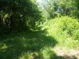 Grassy-path-barn-island