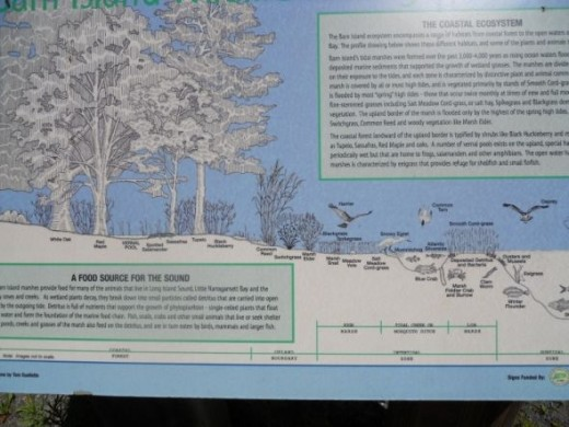 Example of Interpretive sign