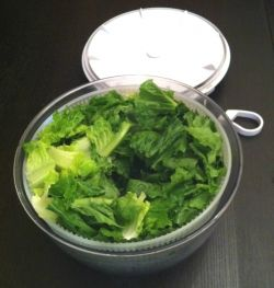 Lettuce Preparation - Ultimate Caesar Salad Recipe
