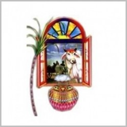 Pongal  Festival of Tamil Nadu