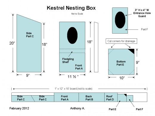 Kestrel Nest Box Plans