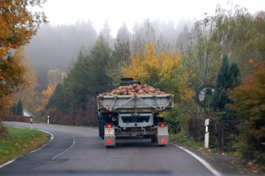 A turnip truck