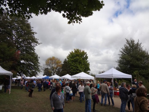 Hundreds of wine lovers come out every year for Vintage Illinois Wine Fest