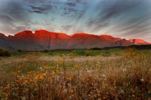 Cederberg Range, South Africa