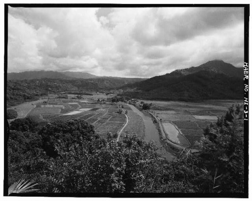 Haraguchi Rice Mill with Hanalei River running through it