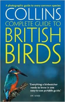 Collins field book guide to British Birds