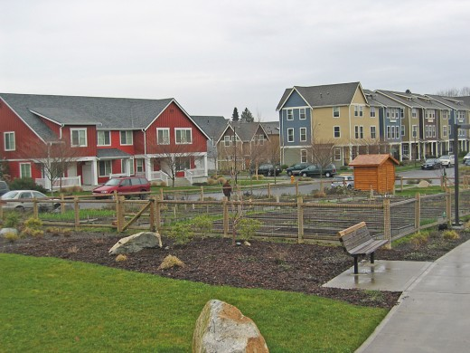 An urban farm among houses in a populated neighborhood.