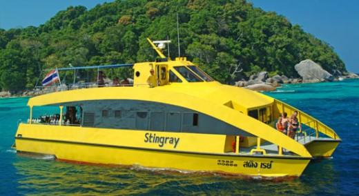 MV Stingray - Catamaran day trips