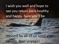 "Bon Voyage Card Messages and ""Have a Safe Trip"" Wishes"