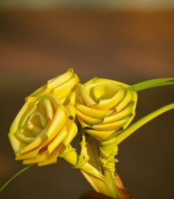 Three Palm Roses